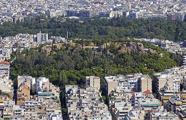 Οι δήμοι καλούνται να δηλώσουν δασικές και αναδασωτέες εκτάσεις