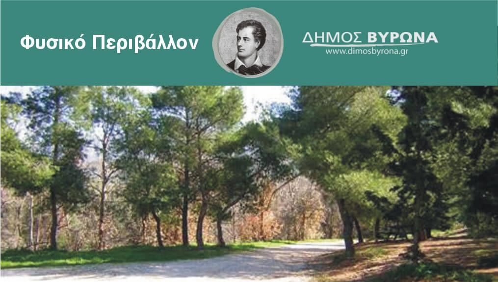Αίτημα του Δημάρχου Βύρωνα προς τη Φιλοδασική Ένωση Αθηνών για τη συντήρηση του Κουταλά