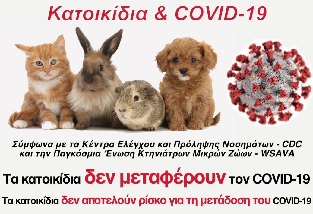 Δήμος Γαλατσίου: Kατοικίδια ζώα και COVID 19 – Μύθοι και πραγματικότητα