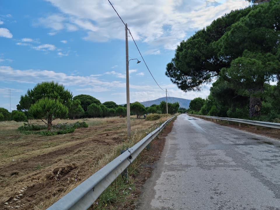 Δήμος Μαραθώνος : Ξεκίνησε η επιχείρηση «Δρυάδες» για την αντιπυρική θωράκιση του Δήμου μας