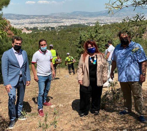 Εργασίες αποψίλωσης για την πρόληψη πυρκαγιάς στα Τουρκοβούνια