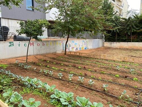 """Εγκαινιάστηκε ο """"Αστικός Κήπος – BIOHABILITY"""", πρόγραμμα για κοινωνική και επαγγελματική ένταξη των ατόμων με αναπηρία"""